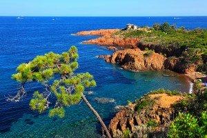 Esterel Coastline